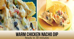 Warm Chicken Nacho Dip