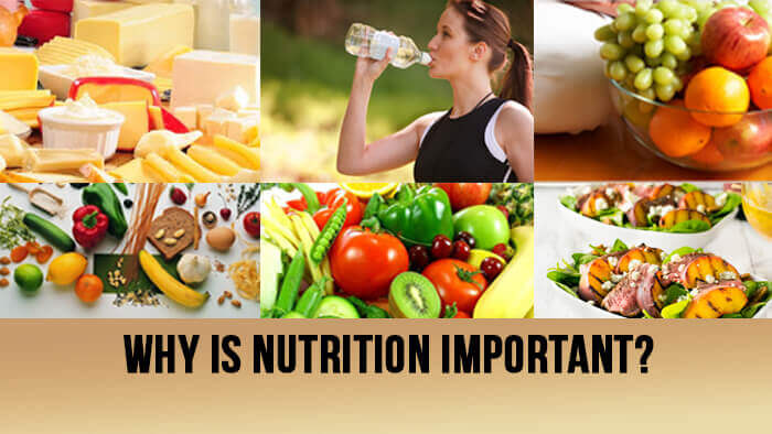 why is nutrition important Why is nutrition important:- what is the secret to a long and healthy life certainly, nutrition is one of the factors to achieve this goal and in homage to health.