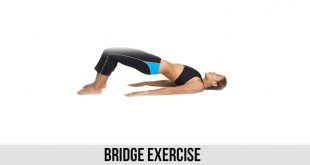 Bridge Exercise