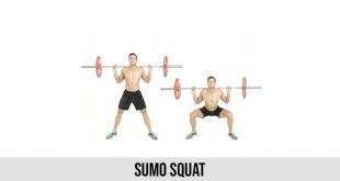 Sumo Squat Exercise