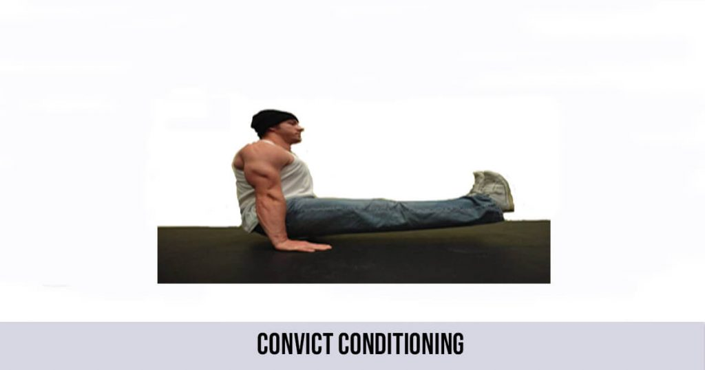 convict conditioning paul wade pdf