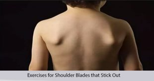 Exercises for Shoulder Blades that Stick Out