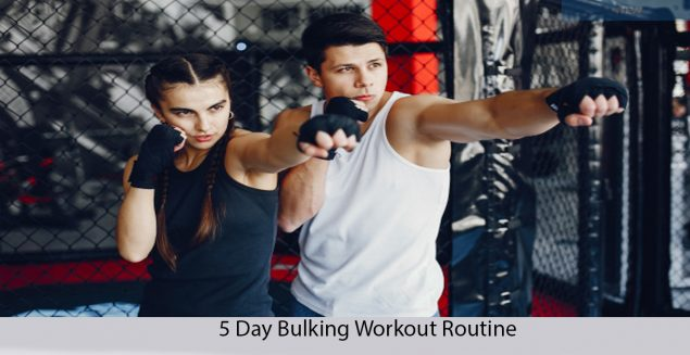 5 DAYS BULKING WORKOUT ROUTINE