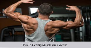 how to get big muscles in 2 weeks