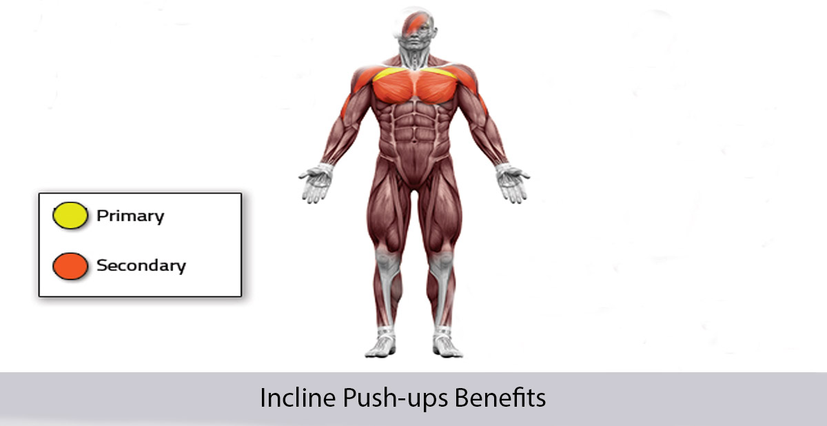 incline push ups benefits