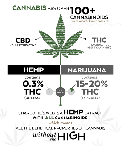 Difference of Legality Between CBD Derived from Hemp and CBD Derived from Marijuana