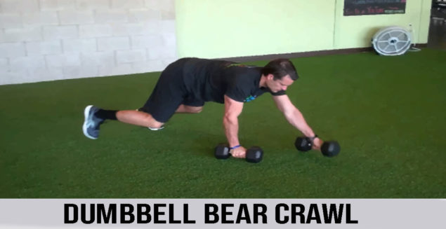 DUMBBELL BEAR CRAWL exercise