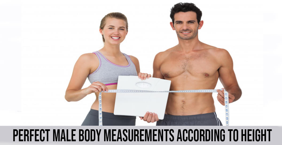 perfect male body measurment according to height
