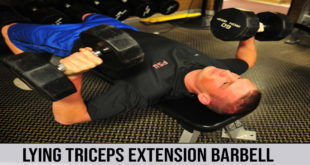 LYING TRICEPS EXTENSION BARBELL