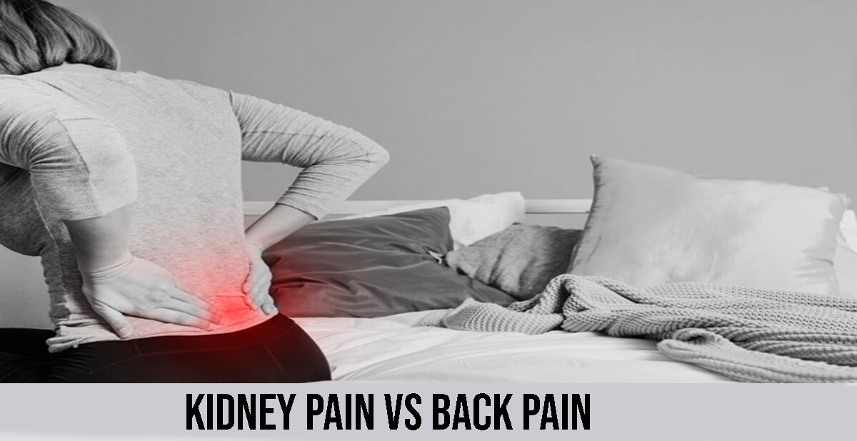 kidney pain vs back pain