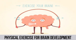 best Physical exercise for brain