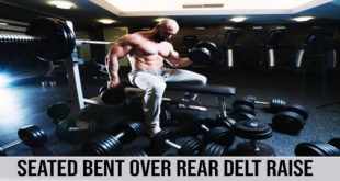 seated bent over rear delt raise exercise