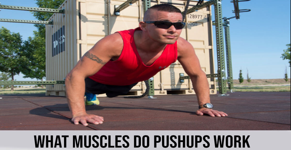 what do pushups work