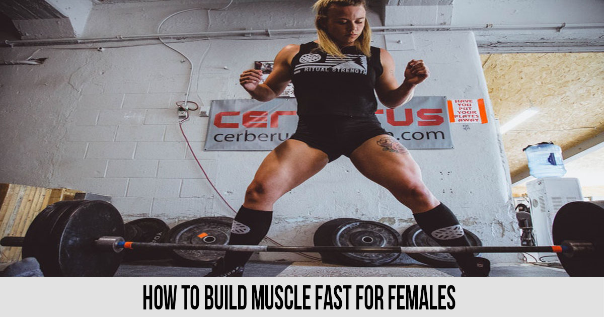 How To Build Muscle Fast For Females